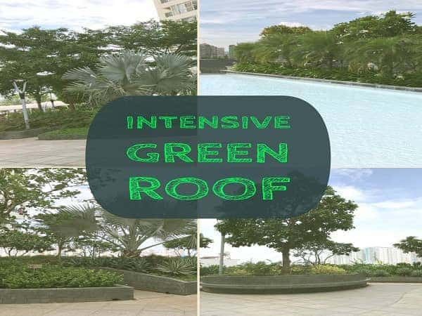 intensive-green-roof-garden